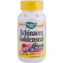 Nature's Way Echinacea Goldenseal Combo (1x100 CAP)