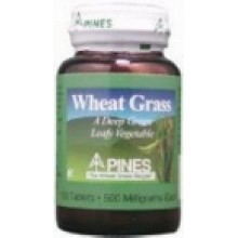 Pines International 100% Wheat Grass Powder (1x10 Oz)