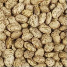 Beans Pinto Beans (1x5LB )