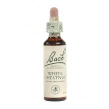 Bach White Chestnut (1x20 ML)