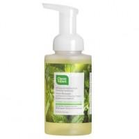 Cleanwell Spearmint Lime Foam Hand Wash (1x9.5 Oz)