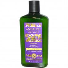 Andalou Naturals Full Volume Lavender & Biotin Style Spray (1x8.2 Oz)
