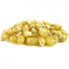 Grains White Popcorn (1x25LB )