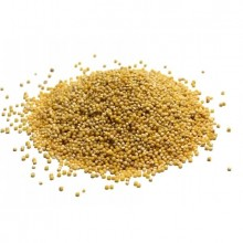 Grains Hulled Millet (1x25LB )