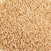 Seeds Nat Brown Sesame Seed (1x25LB )