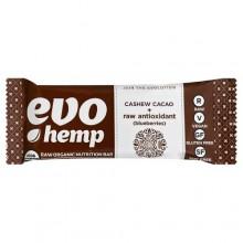 Evo Hemp Cashew Cacao Plus Antioxidant (12x1.7 OZ)