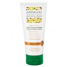 Andalou Naturals Argan Oil Plus Deep Conditioner  (1x5.8 OZ)