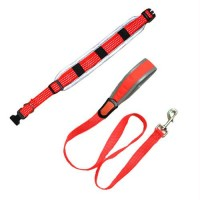 Reflective Adjustable Collar with Leash - Orange - Large