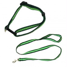 Rainbow Adjustable Collar with Leash - Green - Medium