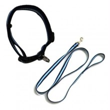 Rainbow Adjustable Collar with Leash - Blue - Large