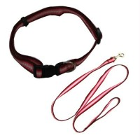Rainbow Adjustable Collar with Leash - Red - X-Small