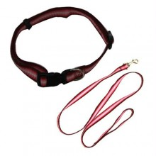 Rainbow Adjustable Collar with Leash - Red - Small