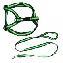 Rainbow Adjustable Harness with Leash - Green - Medium