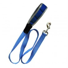 Iconic Pet Reflective Nylon Leash - Blue - Medium