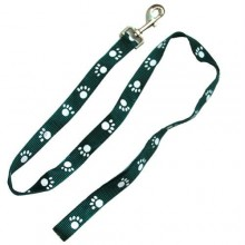 Iconic Pet Paw Print Leash - Green - Medium