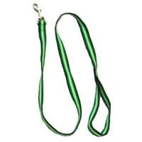 Iconic Pet Rainbow Leash - Green - Medium