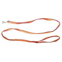 Iconic Pet Rainbow Leash - Yellow - Medium