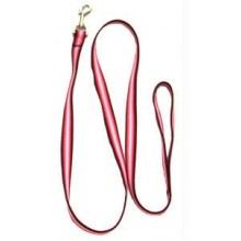 Iconic Pet Rainbow Leash - Red - Large