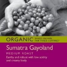 Tony's Coffees & Teas Ground Sumatra Gayoland (6x12Oz)