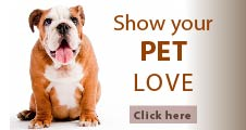 Dog Vitamins and Supplements Online